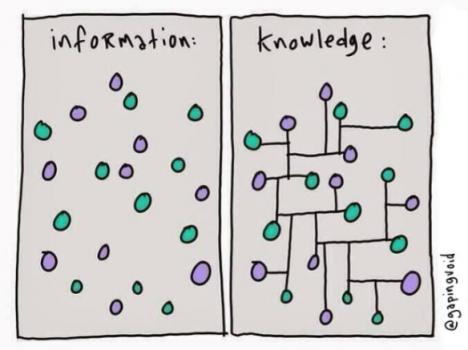 Información frente a conocimiento.